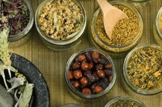 Лечение гастрита растительными средствами в домашних условиях