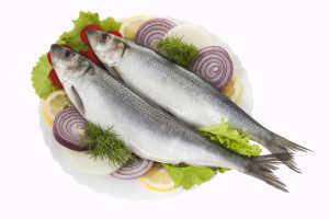 Какую рыбу разрешается употреблять при гастрите