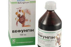 Особенности лечения гастрита Бефунгином