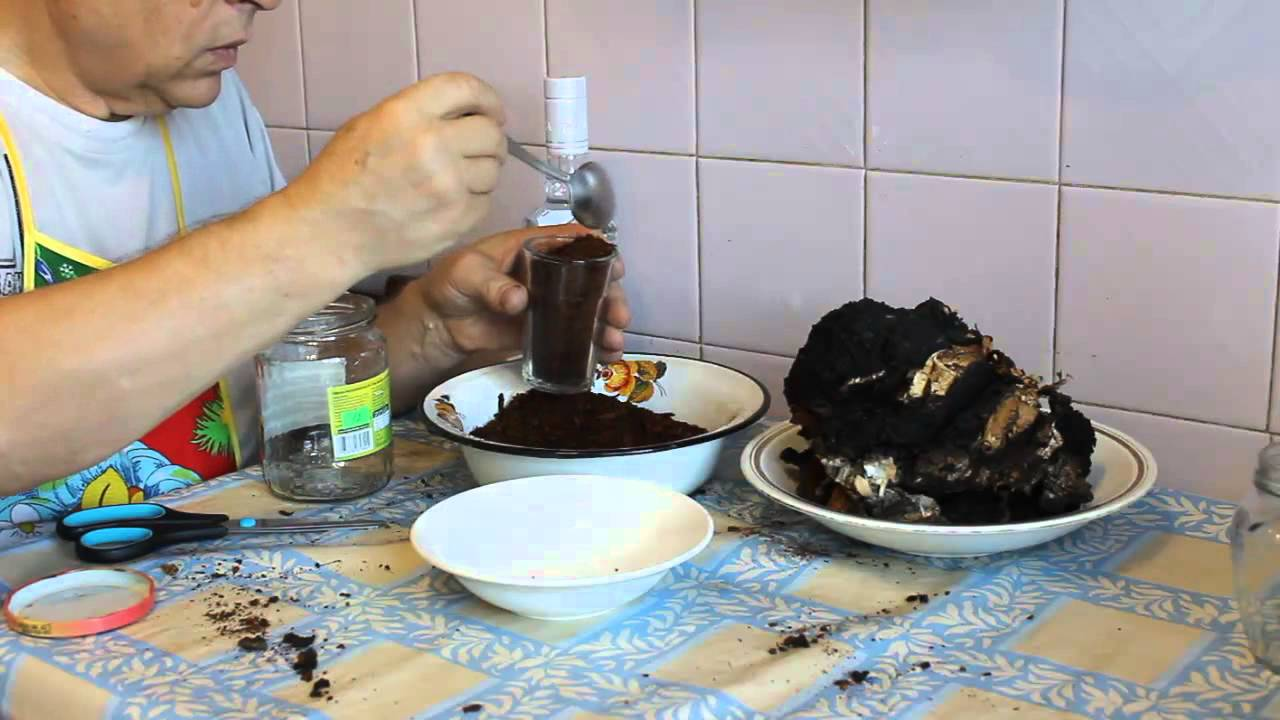 Приготовление порошка чаги