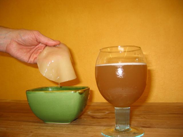 Чайный гриб при гастрите