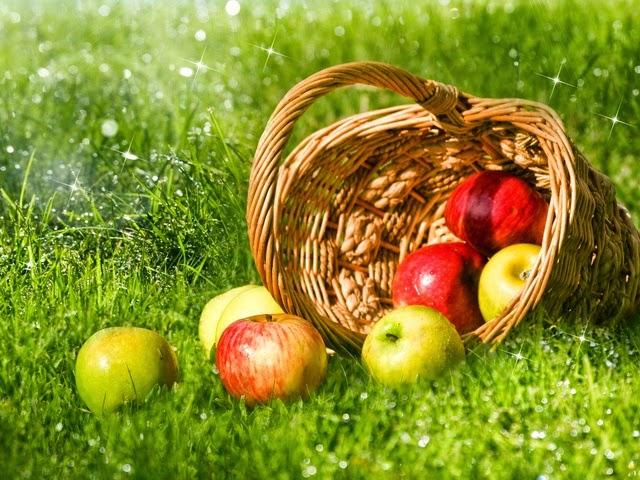 Правила выбора яблок