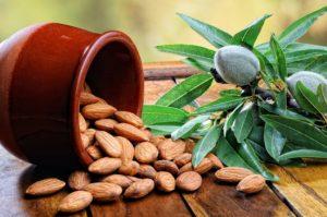 При гастрите запрещено употреблять в пищу миндаль, поскольку в нем содержится синильная кислота