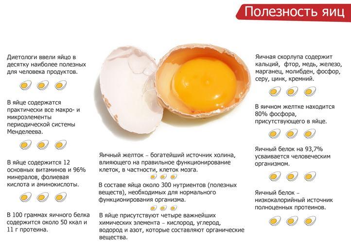 Чем полезны яйца вареные при диете